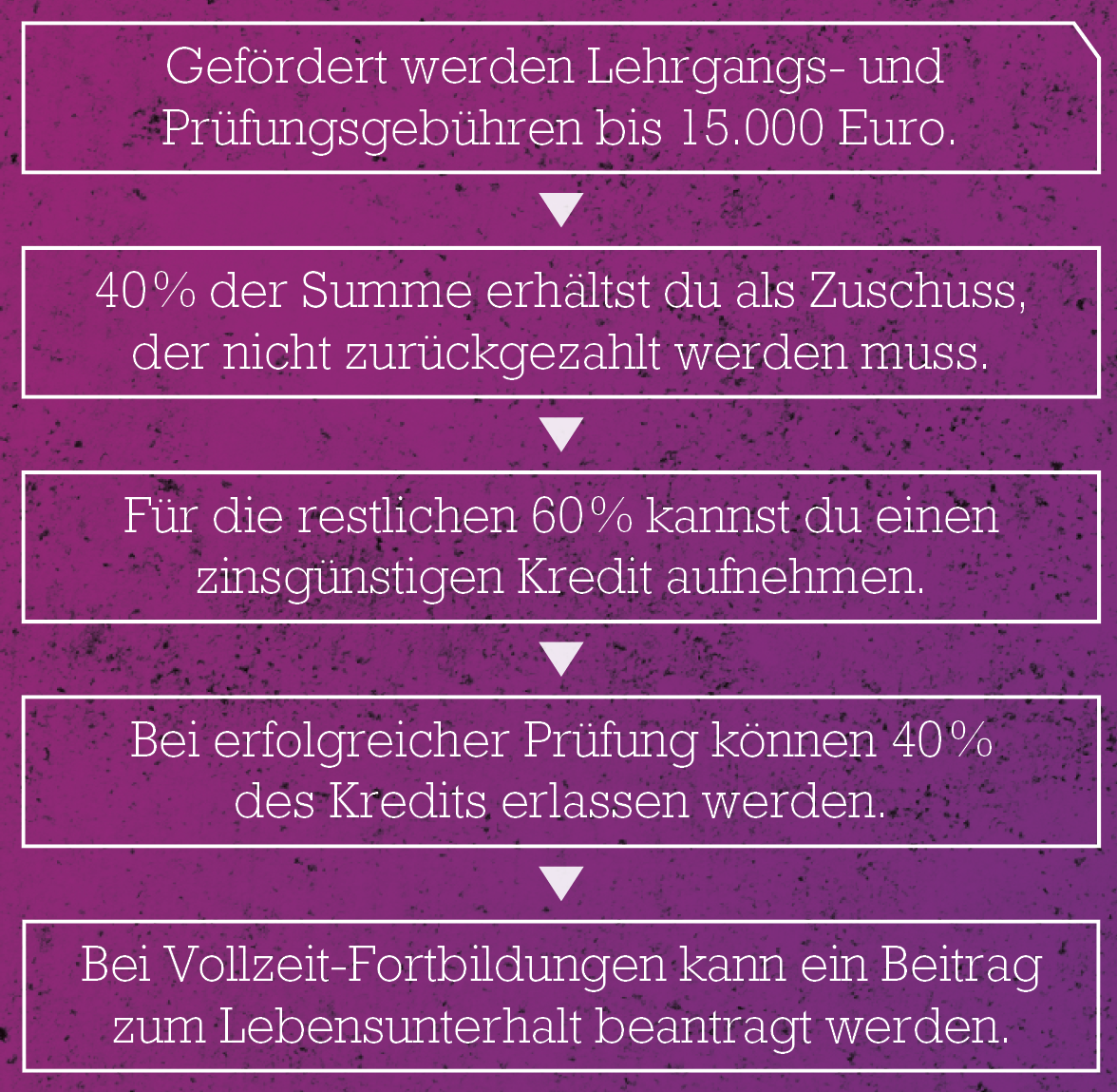 Aufstiegs-Bafög für Meister