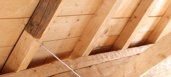 Holz- und Bautenschützer