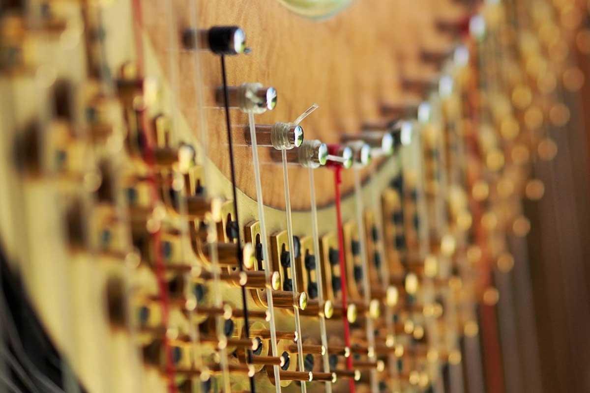 Zupfinstrumentenmacher